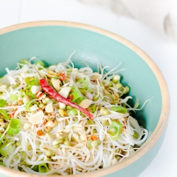 START!_bean_sprouts_recipe-hotcurrysauce.com